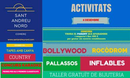 FESTA ACTIVITATS 6 DESEMBRE 2014